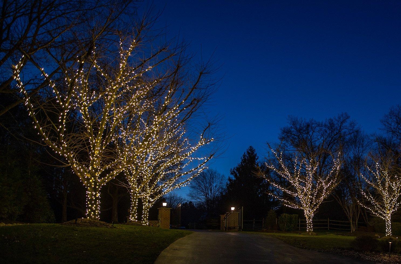 holiday lighting designer