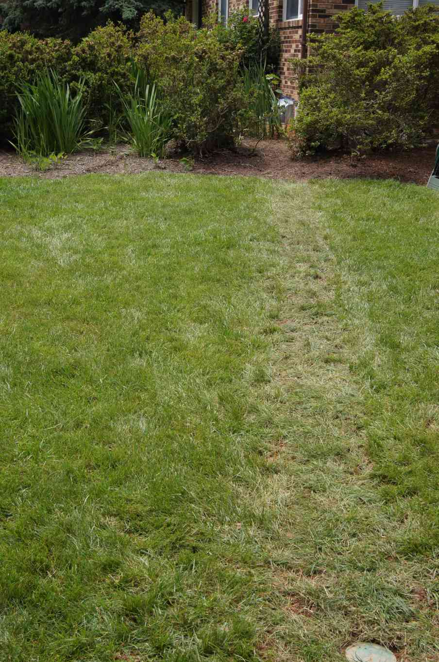 landscape repair in howard county