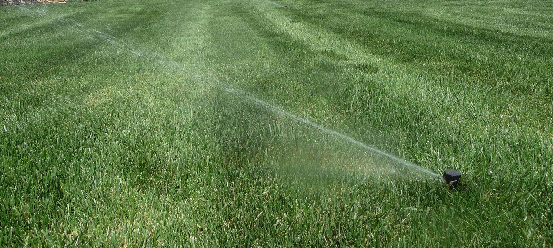 irrigation-system-maintenance
